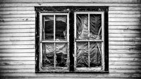 HomesteadWindows-2